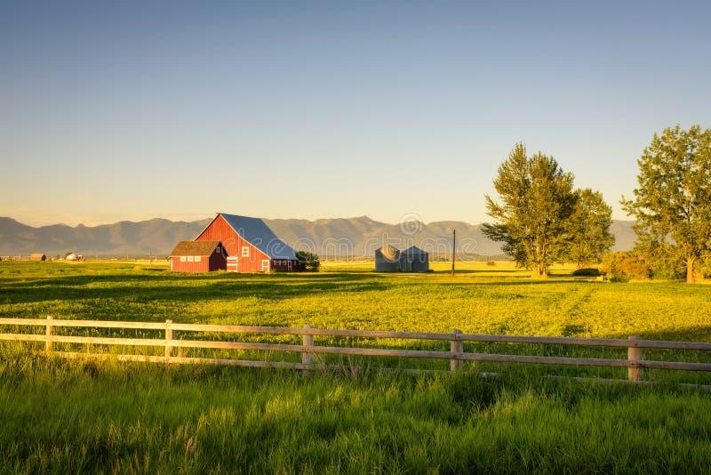 Sommarsolnedgång med en röd ladugård i lantliga Montana och Rocky Mountains royaltyfria bilder