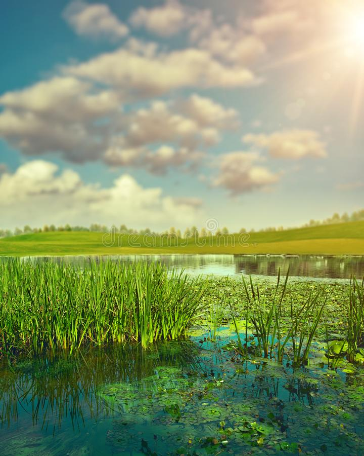 Sommartid Abstrakt säsongsbetonat landskap arkivbild