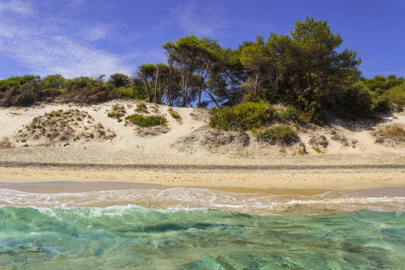 Sommartid De mest härliga sandstränderna av Apulia: Alimini fjärd, Salento kust Italien Lecce arkivfoton