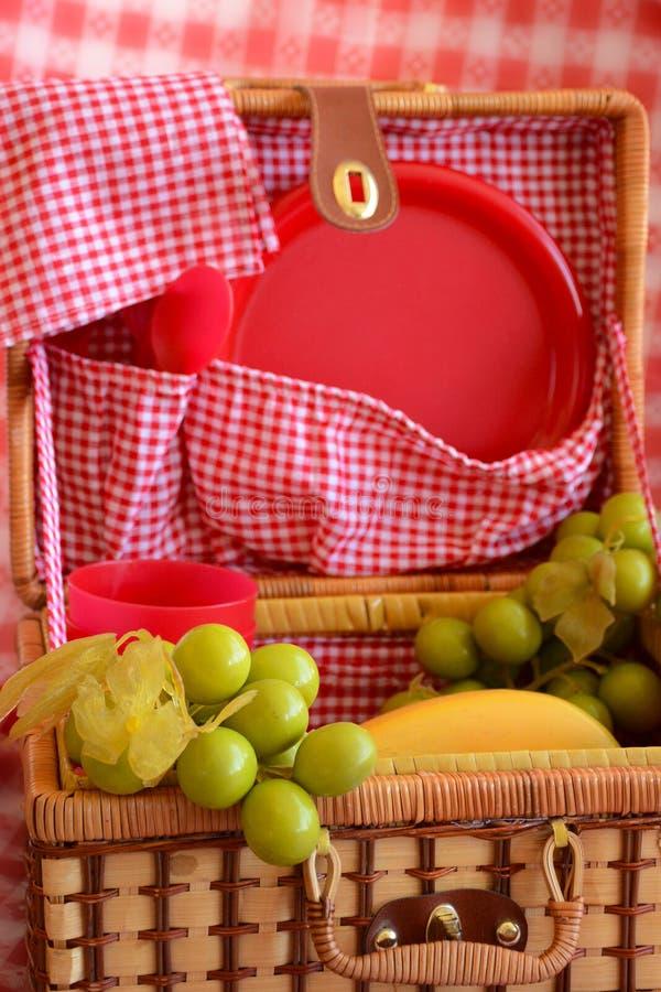 Sommartidgyckel med en picknicklunch! fotografering för bildbyråer