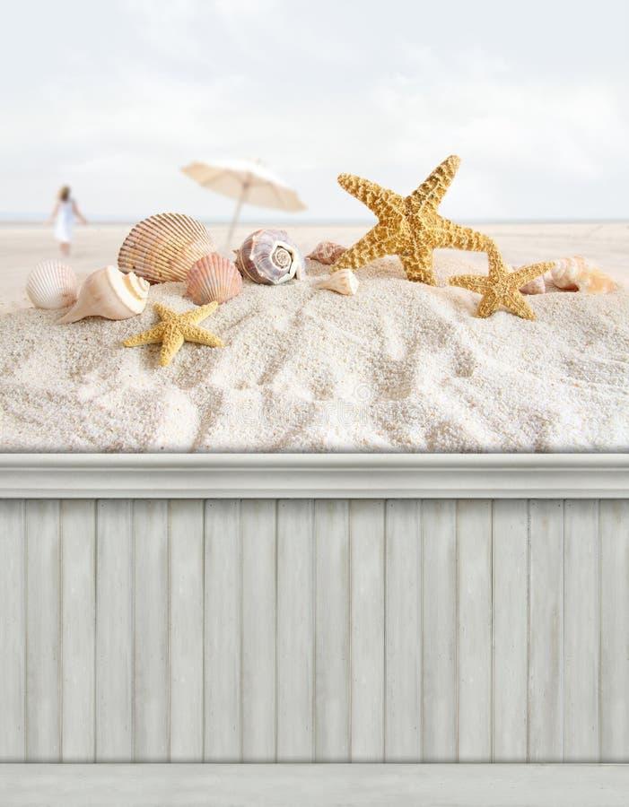 Sommarväggbakgrund/bakgrund royaltyfria bilder