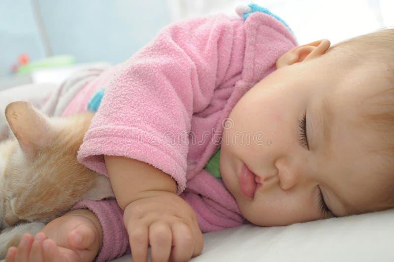Sommeil de bébé et de chat photos libres de droits