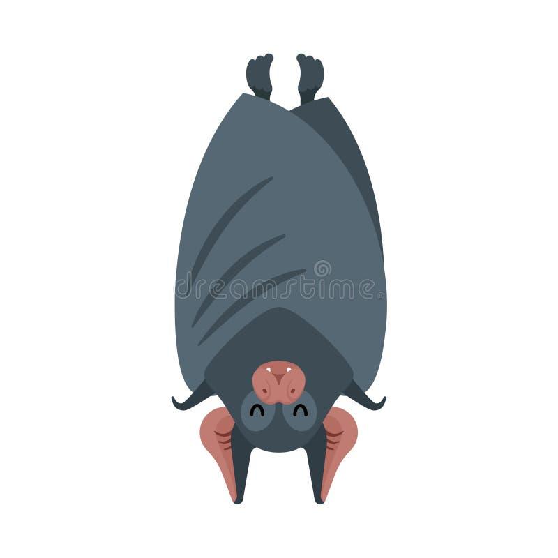 Sommeil de batte d'isolement Vampire d'animaux de nuit Illustration de vecteur illustration de vecteur