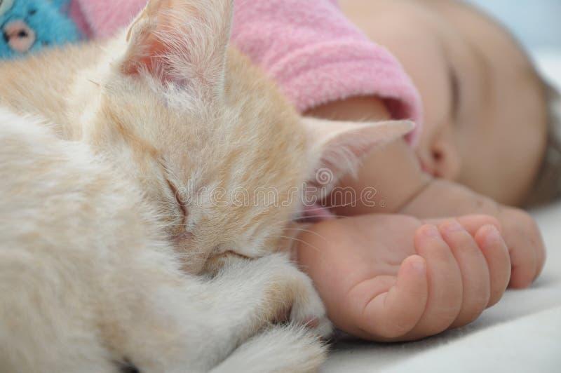 Sommeil de jour de bébé et de chat image libre de droits