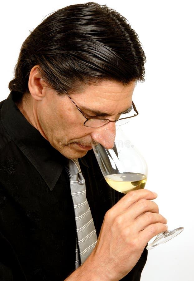 Sommelier (degustatore del vino) immagini stock libere da diritti