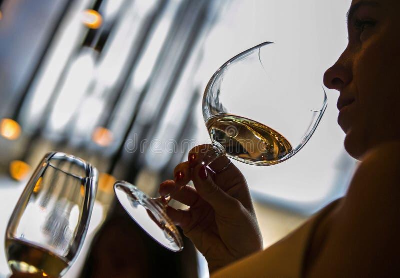 Sommelier do vinho imagens de stock