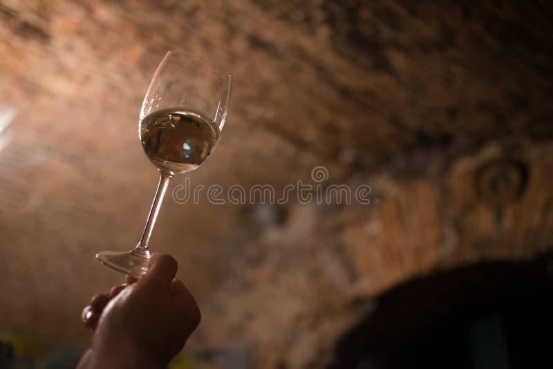 Sommelier que disfruta del color de vino en la bodega vieja imagen de archivo libre de regalías