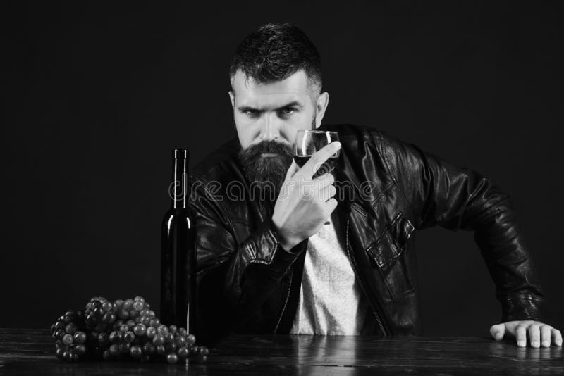 Sommelier tastes expensive drink. Winetasting and degustation concept. Man with beard holds glass of wine on dark brown background. Degustator with strict face royalty free stock photo