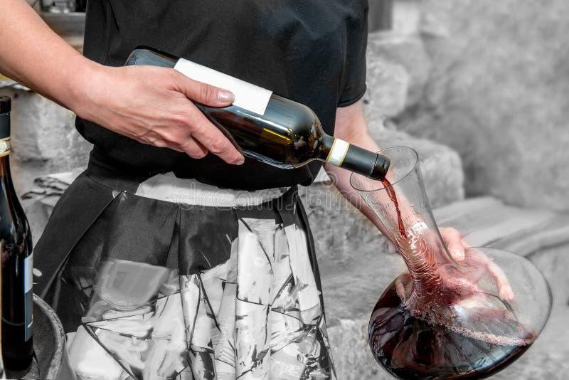 Sommelieren häller vin in i ett exponeringsglas från en bunke Ventilation av rött vin karaff royaltyfri foto