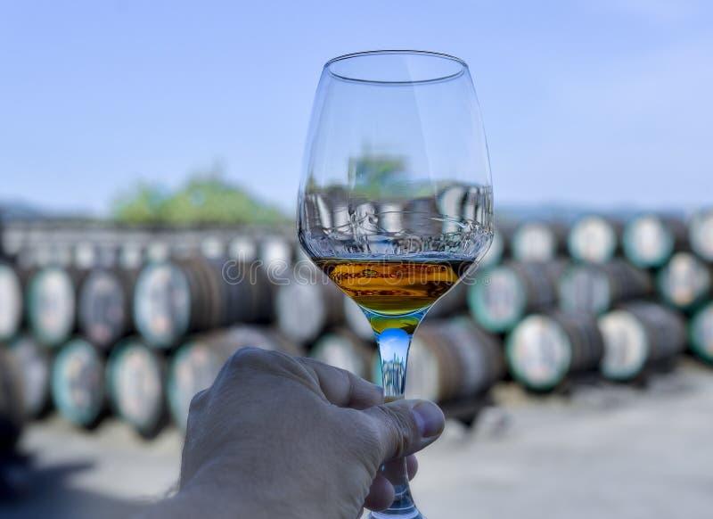 Sommelierhand die een glas met binnen wijn houden royalty-vrije stock foto