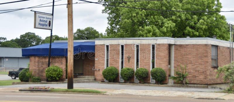 Sommer-Alleen-Tierklinik, Memphis, TN lizenzfreies stockbild
