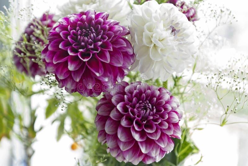 Sommer-Blumenstrauß - Dahlien stockbild