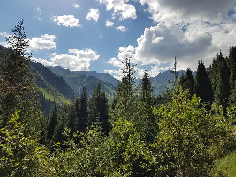 Sommer in den Bergen lizenzfreie stockfotografie