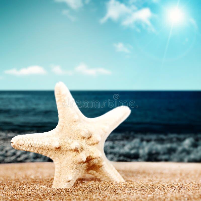 Sommer entspannen sich lizenzfreies stockbild