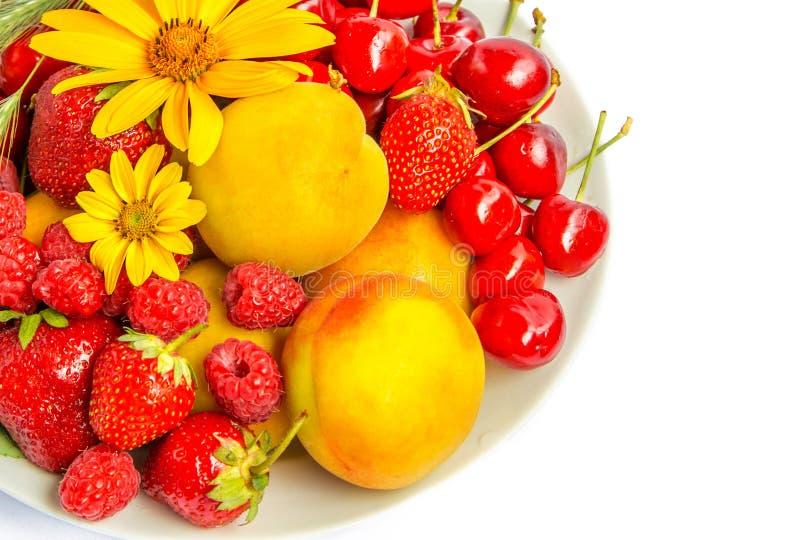 Sommer-Früchte und Beeren lizenzfreie stockfotografie