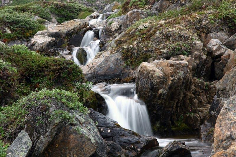 Sommer in Grönland-Natur lizenzfreies stockfoto