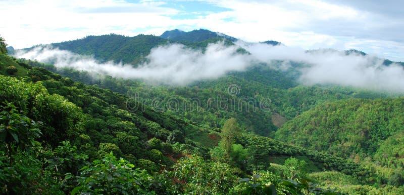 Sommer herein in der nördlichsten Provinz von Thailand lizenzfreie stockbilder