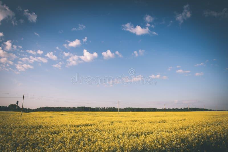 Sommer-Landschaft mit Rapssamen Feld und Wolken - Weinlesefilm e stockbild