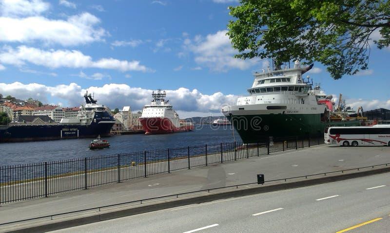 Sommer in Norwegen lizenzfreie stockfotografie