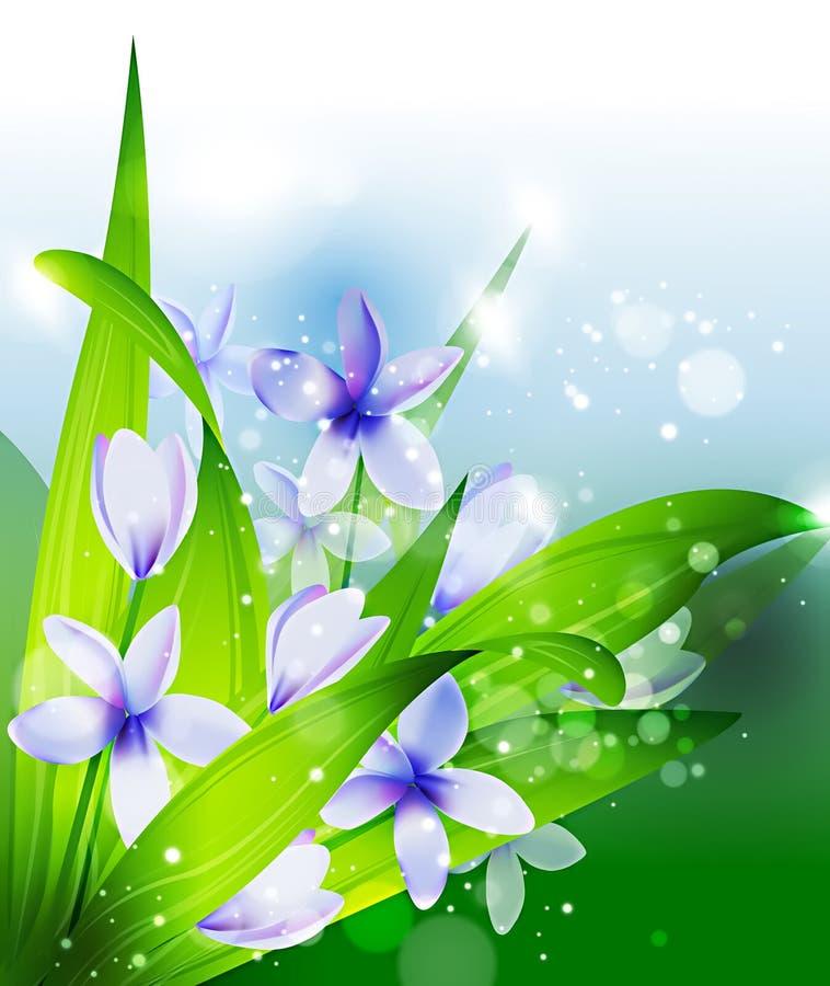 Sommer oder Frühlingsvektor lizenzfreie abbildung