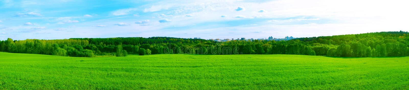 Sommer-Panorama mit Stadt im Wald lizenzfreie stockfotos
