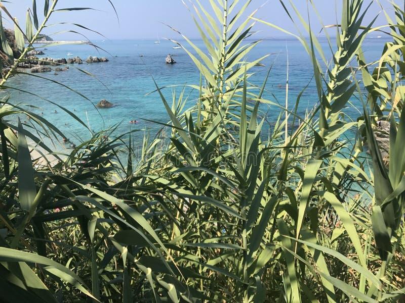 Sommer-Paradies lizenzfreies stockfoto