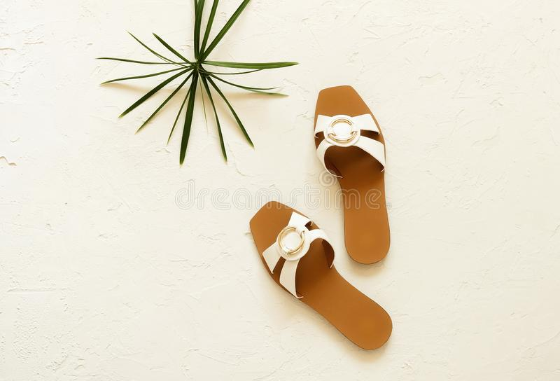 Sommer-Schuhsandalen der Frauen und tropisches Blatt auf weißem Weinlesehintergrund stockfoto