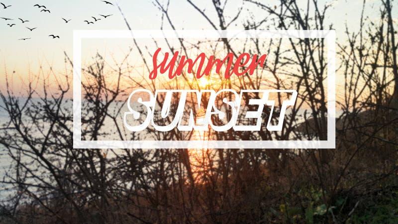 Sommer-Sonnenunterganghintergrund und -plakat stock abbildung