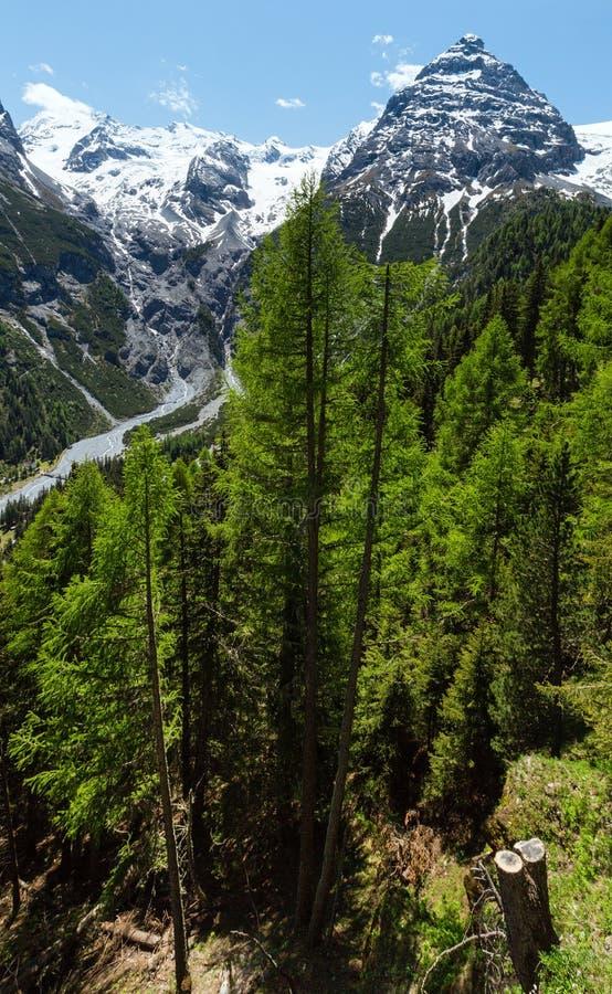 Sommer Stelvio Durchlauf (Italien) stockbild