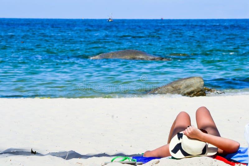 Sommer Thailand stockbild