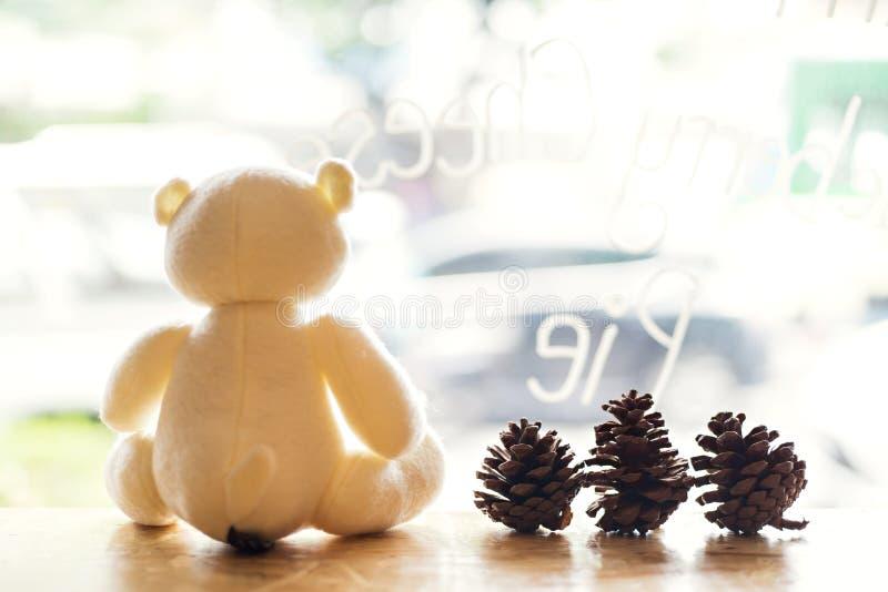 Sommer und Teddybär lizenzfreies stockbild