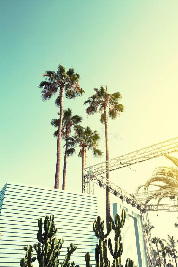 Sommer-Urlaubsreise-städtisches Konzept Schöne Palmen auf städtischem B stockfotografie