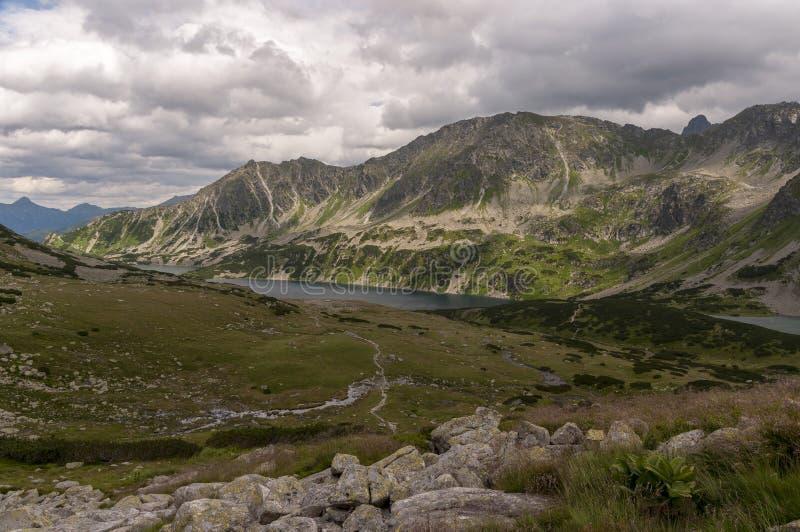 Sommeransicht des Tales von fünf polnischen Teichen Tatra Berge stockfotos