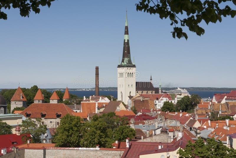 Sommeransicht von Tallinn lizenzfreies stockbild