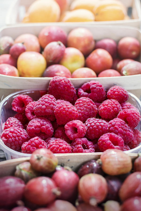 Sommerbeeren und -früchte lizenzfreies stockfoto