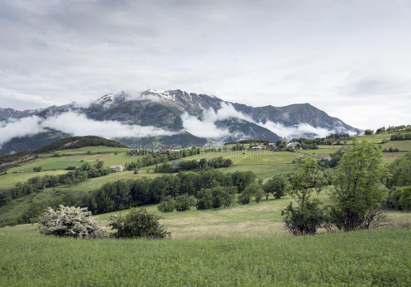 Sommerblumen und -berge nähern sich barcelonnette in Haute Provence lizenzfreie stockfotos