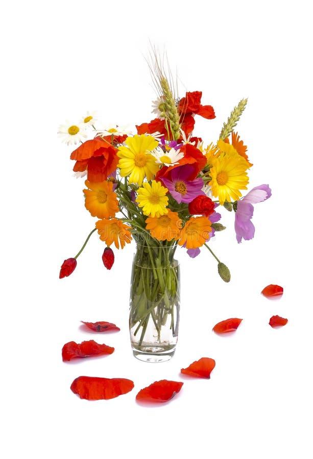 Sommerblumenblumenstrauß- und -mohnblumenblattblumenblätter, weißer Hintergrund lizenzfreies stockfoto