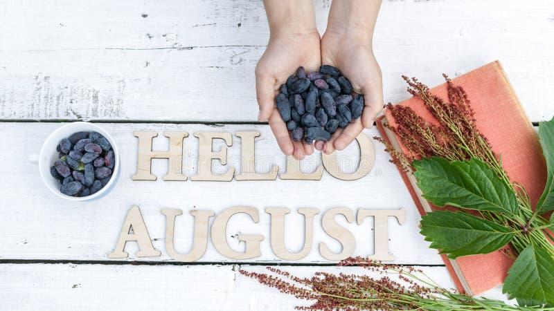 Sommerfahne: Wort hallo August, die Hände der Kinder halten blaue Beeren, altes Buch und Grün auf einem weißen hölzernen rustikal lizenzfreie stockfotos