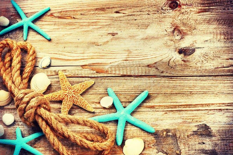 Sommerferienhintergrund mit Muscheln und altem Seil lizenzfreies stockfoto