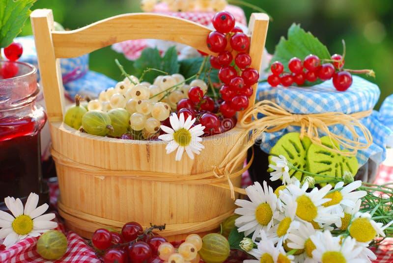 Sommerfrüchte und -konserven im Garten lizenzfreies stockfoto