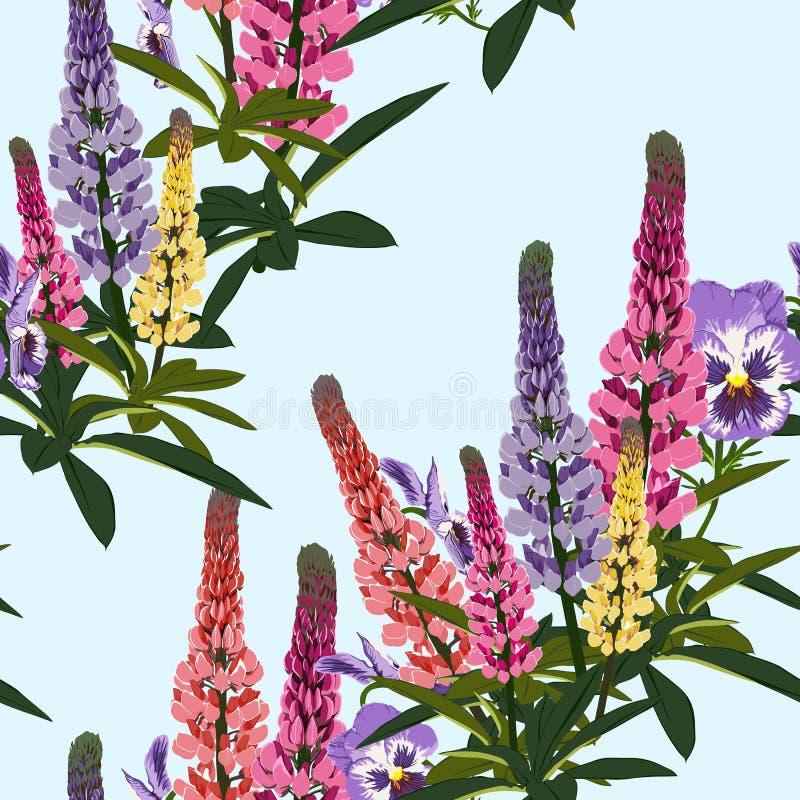 Sommerfrühling wilde gelbe Blumen Lupines Rosa, violettes und mit grünen Blättern vektor abbildung