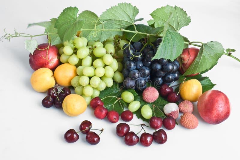Sommerfrucht stockfotografie