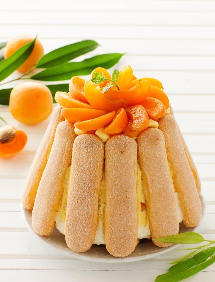Sommerfruchtkuchen Charlotte lizenzfreie stockbilder