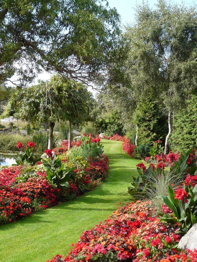 Sommergarten stockbild