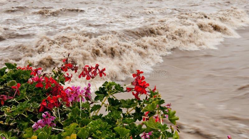 Sommergendosi in inondazione dopo pioggia fotografia stock