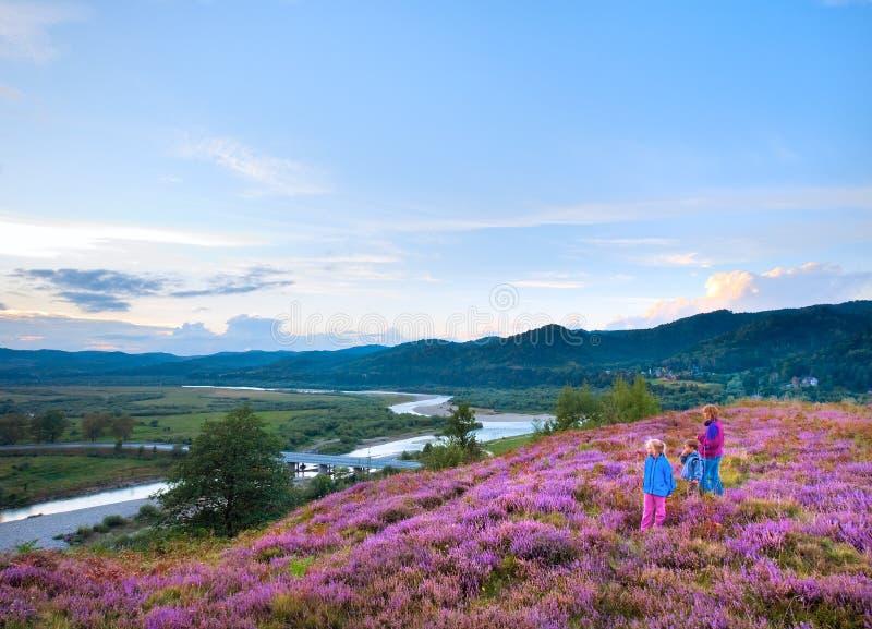 Sommerheidekrautblumenhügel und -familie auf Hügel übersteigen stockbilder