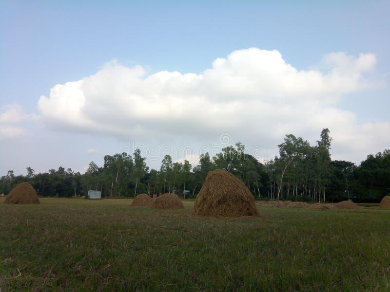 Sommerhimmel im Dorf und im sehr netten Bild lizenzfreie stockbilder