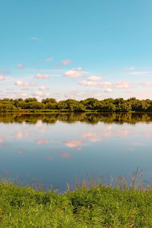 Sommerhimmel mit den rosa Wolken, die im Wasser sich reflektieren Wiese und Wald auf den Banken Seashells gestalten auf Sandhinte lizenzfreie stockfotos
