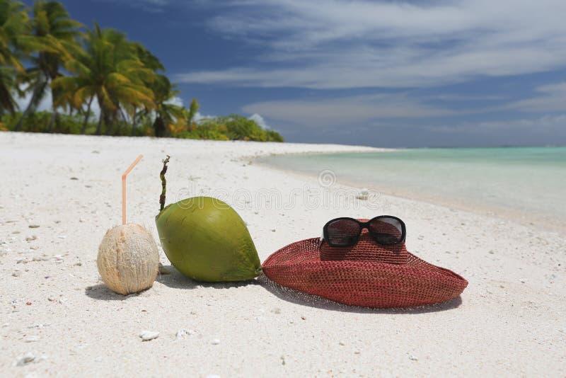 Sommerhut und -kokosnüsse auf tropischem sandigem Strand lizenzfreie stockfotografie