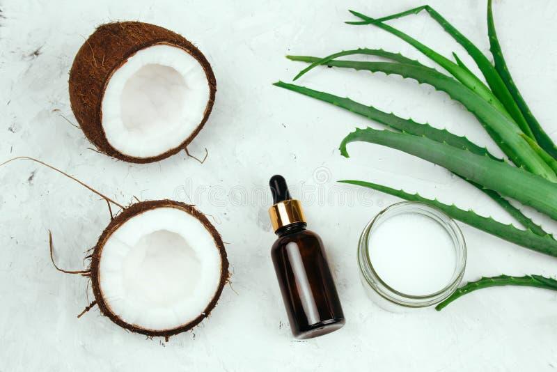 Sommerkosmetik legen flach Creme, Ölflasche, Kokosnuss und Aloevera-Blätter lizenzfreie stockfotografie